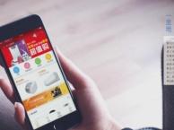 电商app软件开发_温州电子信息研究院