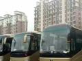 永嘉旅游大巴,中巴车,商务车,考斯特,5-55坐长途包车