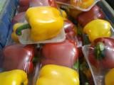 年貨蔬菜鄭州蔬菜禮品箱