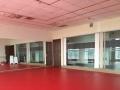 出租舞蹈教室,排练厅,跆拳道教室