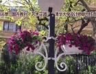 北京鸿恒远景加盟 灯具灯饰 投资金额 50万元以上