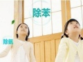 青田专业除甲醛、氨、苯、TVOC新房装修异味等有害