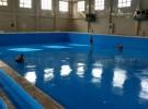 洛阳新世纪建筑防水保温工程有限公司 办理公积金业务
