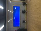 广州海洋生物展览场地出租-洋清水族-美人鱼表演出租