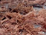 武汉高价回收废铜,废铝.废铝,工业边角料、电线电缆