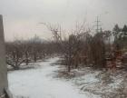 棉纺家属区附近 土地 2000平米