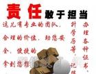 杭州塔吊如何报名技术员施工员报名要求电工培训流程