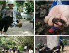 碧海湾漂流酷炫体验一日游惠州夏季旅游攻略