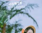 纽约婚纱夏季主题闺蜜写真青春是首歌鉴赏