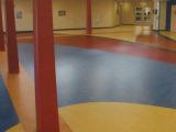 厂价直销 加厚环保商用地板 大巨龙10号