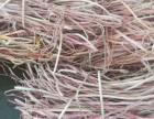 衡阳废旧电线电缆高价回收