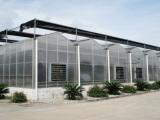 潍坊花卉温室大棚哪家好温室大棚建设哪家好