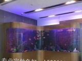 柯桥专业定做鱼缸,鱼缸清洗,搬运、安装