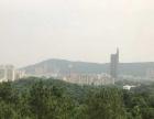 武江沙湖山顶写字楼