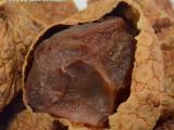 散装美食休闲零食品 特级荔枝干批发 新货特产小核肉厚味甜干果
