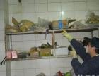 专业提供白蚁防治、灭蟑螂、灭蚊蝇、灭鼠等杀虫服务