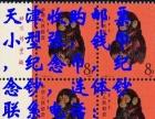 天津本市人长期高价求购邮票邮票年册大小版票
