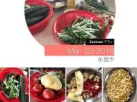 深莞惠周边游金峰农庄野炊烧烤蔬果采摘拓展公司团建