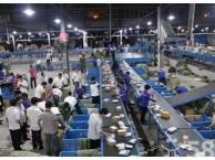 福州快递淘宝 个人 工厂 公司等批量寄件人群价格优惠上门服务