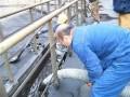 安县通下水道(花荄清理化粪池)窨井污水处理,高压疏通清洗管道