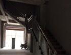 洞口工业园黎园东路 仓库、厂房 500+平米