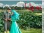 穆斯林主题婚纱照