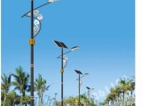 廠家定制LED路燈,6米-8米燈桿,330 450光伏板