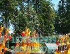 河北省中型游乐设备袋鼠跳物美价廉厂家供应