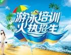 江门蓬江区游泳培训怎么样成人游泳指导(随到随学,包教包会)