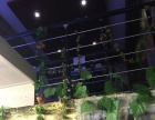 高亭 长河路文化广场 酒楼餐饮 商业街卖场