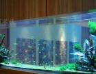 生态草缸定制 生态鱼缸定做 酒店淡水鱼缸定做 大型鱼缸定做