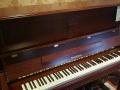春季钢琴促销活动开始啦!