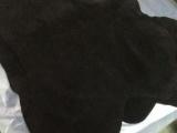 供应二层湿法干贴 移膜革 鞋用二层 牛皮