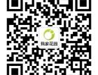 昆山绿化公司,绿植租赁及养护