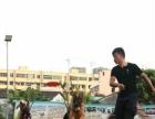 中山伊甸护卫犬训练基地专业训犬,优质导师你的选择!