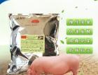 金宝贝干撒式发酵床加盟-养猪发酵床菌种加盟