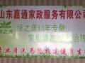 绿之源专业家庭保洁专业家电清洗,消毒,除异味