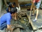 苏州高新区通安镇隔油池清理 污水池 污泥池