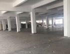 高照中山西路 一楼厂房仓库 600平 层高6米