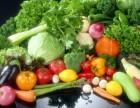 天津食堂食材配送 专业配送 水果蔬菜配送 牛奶配送