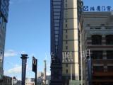 6米大型户外景观广场工程道路照明路灯户外别墅灯室外灯具小区