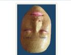 祛斑、祛痘、去痘印、季节性过敏、红脸蛋