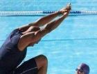 福州乐游成人游泳培训,国家一级游泳运动员指导