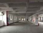 佳海工业园2400平米标准厂房仓库出租