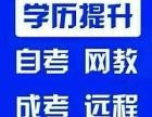 网络教育报名招生