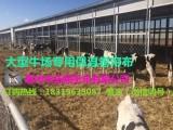 唐山大型牛场专用防寒保温卷帘布