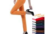 新款韩版彩色铅笔裤糖果色小脚裤靴裤休闲裤女装打底裤批发