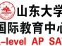 山东大学剑桥国际高中—A-level课程