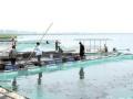 沅江泽峰渔具加工厂供提到网箱
