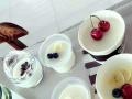 【爱尚酸奶吧】加盟官网/加盟费用/项目详情
